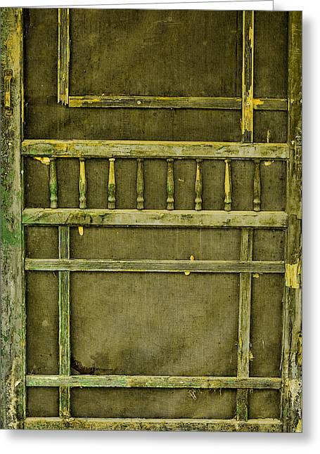 Screen Doors Greeting Cards - Abandoned Greeting Card by Bonnie Bruno