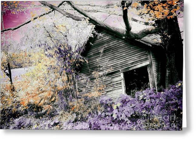 Abandoned Greeting Card by Mindy Sommers