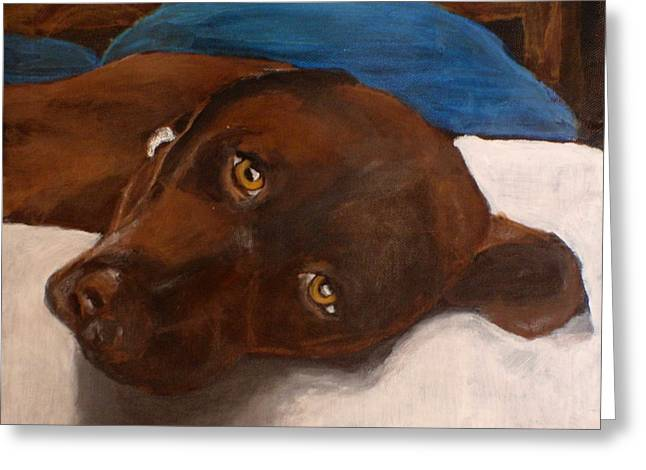 Chocolate Lab Greeting Cards - Abby Greeting Card by Carol Russell