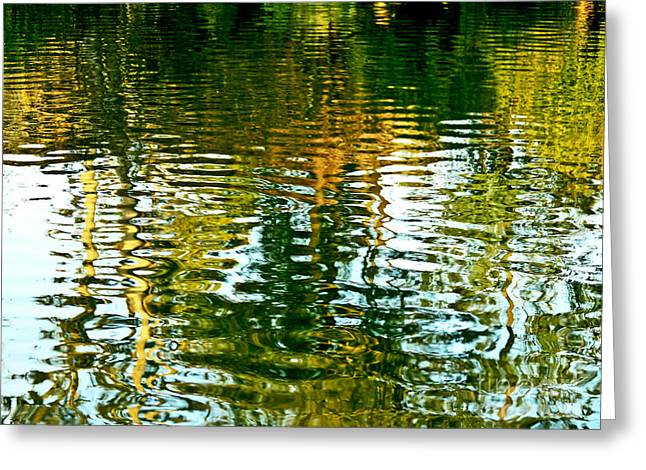 Reflections And Patterns In Nature Greeting Card by Carol F Austin