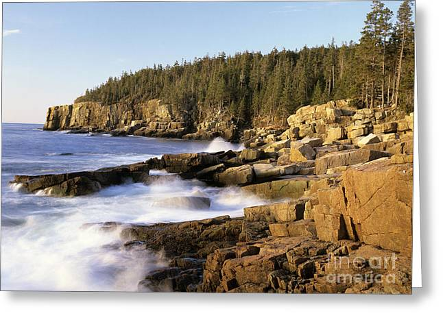 Ledge Photographs Greeting Cards - Acadia National Park - Maine USA Greeting Card by Erin Paul Donovan