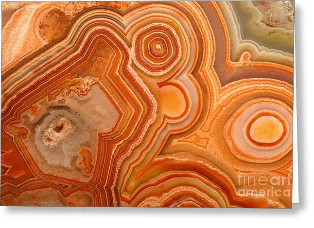 Agate Greeting Cards - Agate Greeting Card by Ted Kinsman