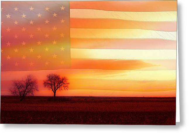 America The Beautiful Greeting Card by James BO  Insogna