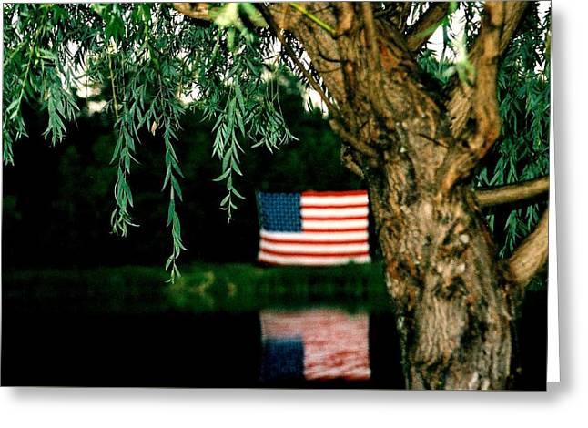 Weeping Greeting Cards - American Flag  Greeting Card by Ellen Carlson