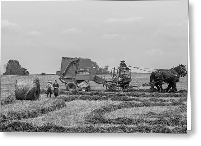Amish Farms Greeting Cards - An Amish Farm Greeting Card by Vladimir Kudinov