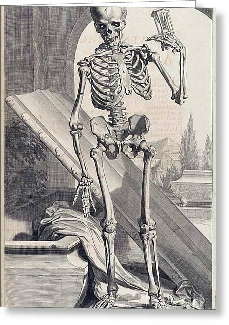 Anatomia Humani Corporis, Table 87, 1690 Greeting Card by Science Source