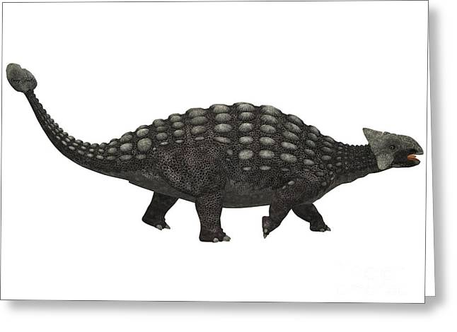 Ankylosaurus On White Greeting Card by Corey Ford