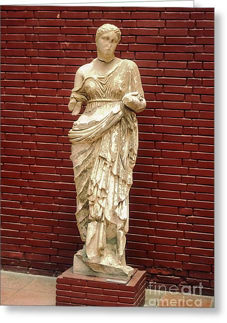 Selcuk Greeting Cards - Aphrodite  Greeting Card by Bob Phillips