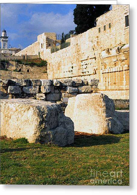 Forehead Greeting Cards - Archaeological Garden Southern Temple Mount Greeting Card by Thomas R Fletcher