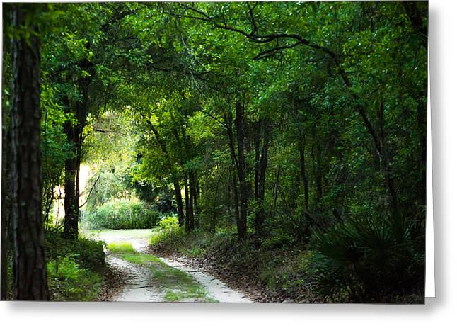 Jogging Greeting Cards - Around the Bend Greeting Card by Shelby  Young