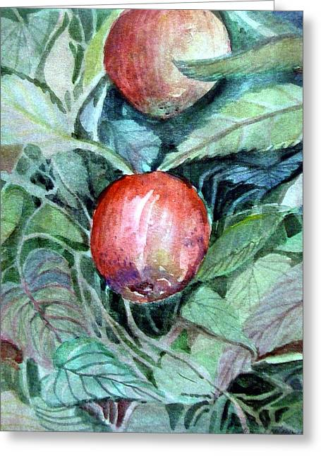 Red Leaves Drawings Greeting Cards - Autumn Apples Greeting Card by Mindy Newman