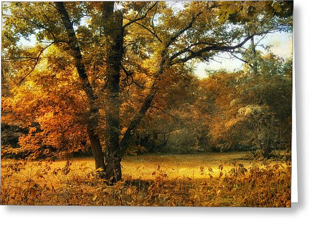 Sunlight Digital Greeting Cards - Autumn Arises Greeting Card by Jessica Jenney