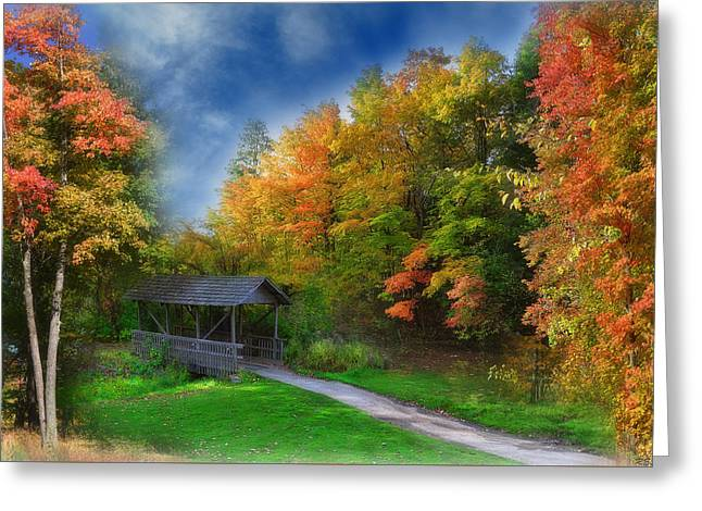 Roadway Greeting Cards - Autumn Bridge Greeting Card by Reese Lewis