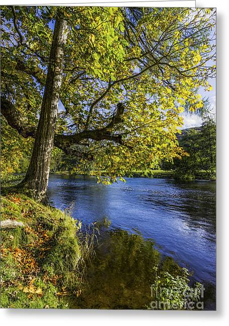 River View Greeting Cards - Autumn By The River Greeting Card by Ian Mitchell