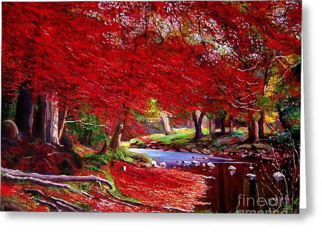 Stream Greeting Cards - Autumn Fire Greeting Card by David Lloyd Glover