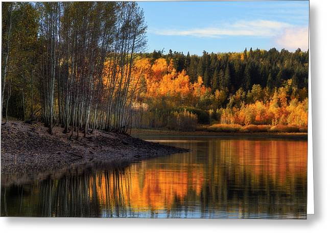 Scenic Byways Greeting Cards - Autumn in the Wasatch Mountains Greeting Card by Utah Images