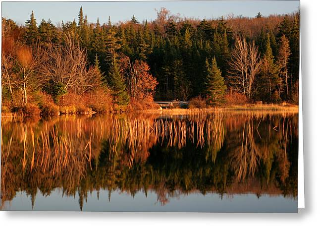 Autumn Lake Greeting Card by Kate  Leikin