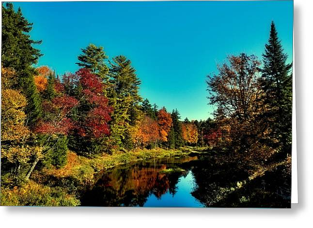 Reflections In River Greeting Cards - Autumn Splendor on the Moose River Greeting Card by David Patterson