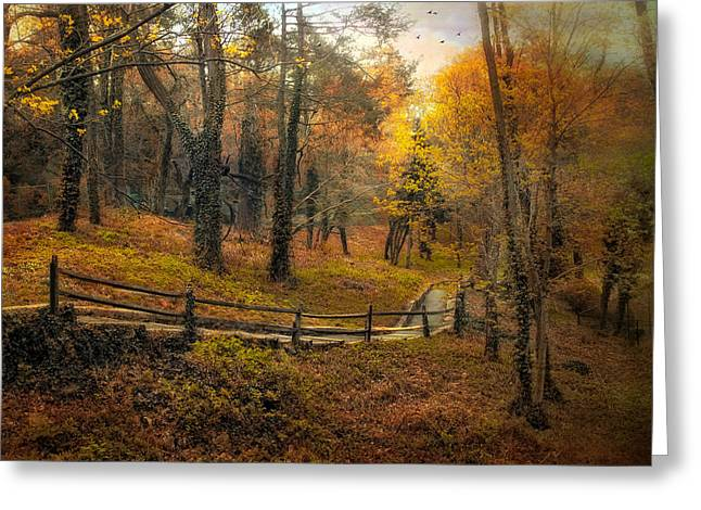 Fence Line Greeting Cards - Autumn Trail Greeting Card by Jessica Jenney