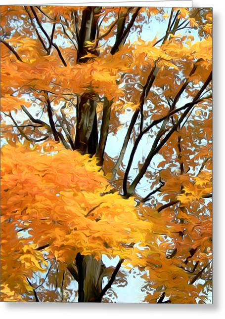 Autumn Photographs Paintings Greeting Cards - Autumn Tree Greeting Card by Munir Alawi