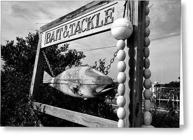Bait and Tackle Greeting Card by David Lee Thompson