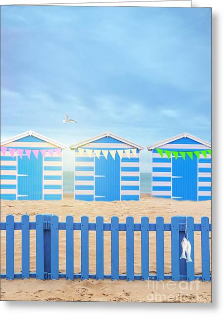 Flying Seagull Greeting Cards - Beach Huts Greeting Card by Amanda And Christopher Elwell