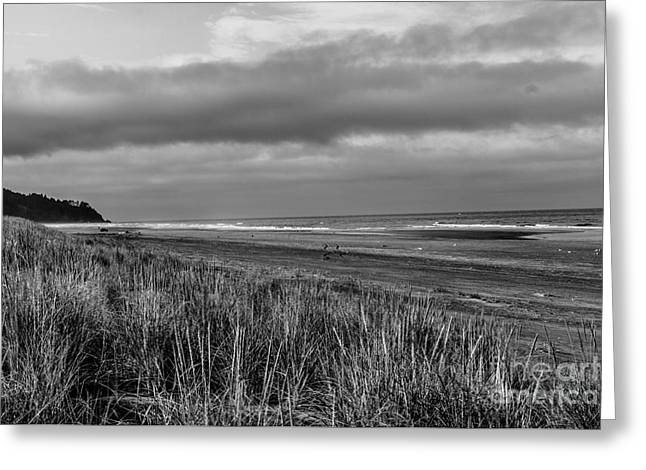 Haybale Greeting Cards - Beach View Greeting Card by Robert Bales