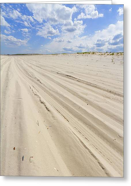 Beauty Mark Greeting Cards - Beach view with car tire tracks in the sand Greeting Card by Andrei Orlov