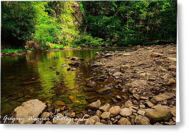 Fishing Creek Greeting Cards - Beaver Dam Creek Greeting Card by Greg Wagner