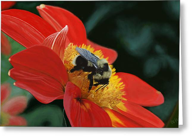 Fuzzy Digital Greeting Cards - Beeutiful Greeting Card by Kevin Phipps