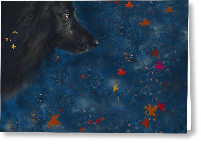 Sheepdog Greeting Cards - Belgian Sheepdog Art 10 Greeting Card by Wolf Shadow  Photography