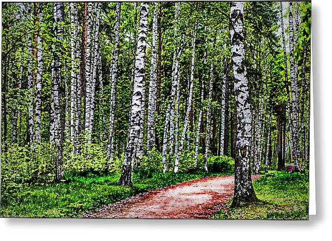 Floral Digital Art Greeting Cards - Birch Grove Greeting Card by Alexey Bazhan