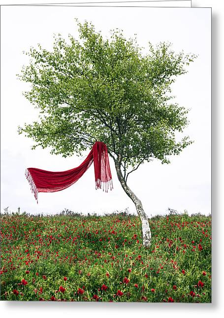 Standalone Greeting Cards - Blowing In The Wind Greeting Card by Joana Kruse