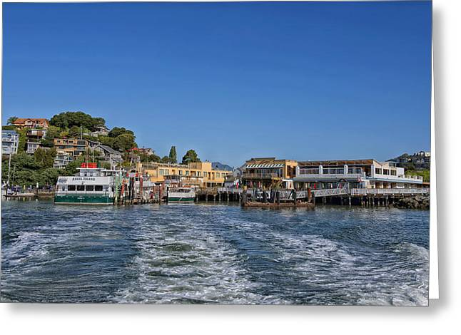 Tiburon Greeting Cards - Boating California Style Greeting Card by Mountain Dreams