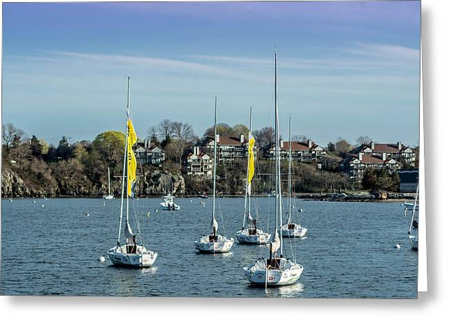 Ocean Sailing Greeting Cards - Boats in Newport Greeting Card by Jerri Moon Cantone