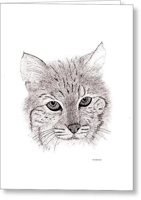 Bobcat Greeting Card by Ed Einboden