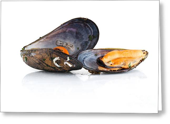 Cut-outs Greeting Cards - Boiled Mussels Isolated Over White Background Greeting Card by Antonio Scarpi