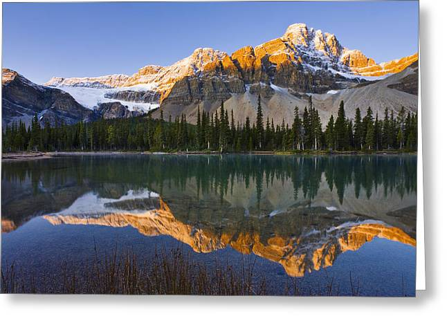 Snow Capped Greeting Cards - Bow Lake And Crowfoot Mountain Greeting Card by Yves Marcoux