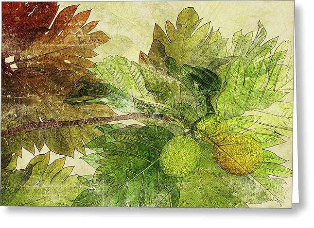 Fruit Tree Art Greeting Cards - Breadfruit Greeting Card by Kaypee Soh - Printscapes