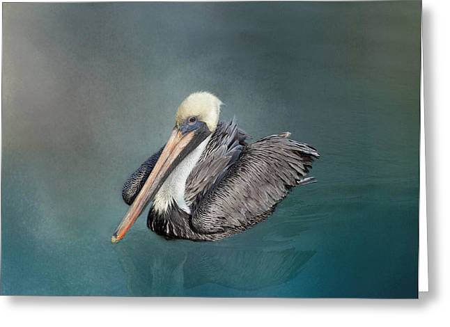 Brown Pelican Greeting Card by Kim Hojnacki