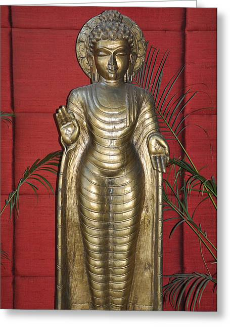 Buddha 1 Greeting Card by Vijay Sharon Govender