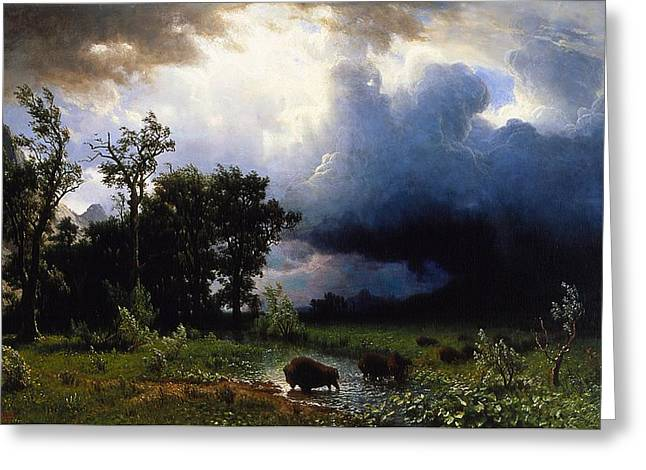 The Great Outdoors Greeting Cards - Buffalo Trail  The Impending Storm Greeting Card by Albert Bierstadt