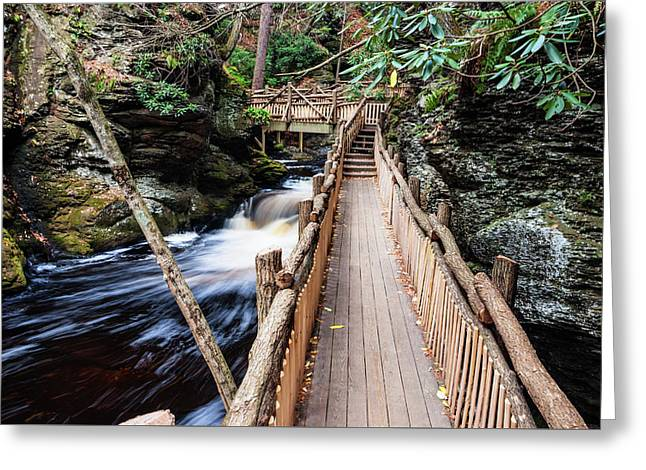 Bushkill Falls State Park Autumn Pennsylvania Usa Greeting Card by Vishwanath Bhat