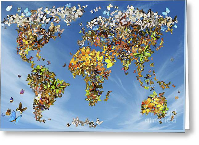 Butterfly Map Greeting Card by Garry Walton