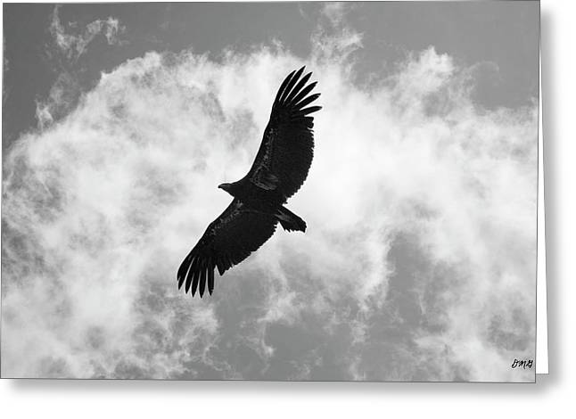 Vulture Silhouettes Greeting Cards - California Condor in Flight Greeting Card by David Gordon