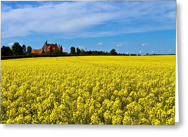 Fresh Green Greeting Cards - Canola Castle Greeting Card by Gert Lavsen