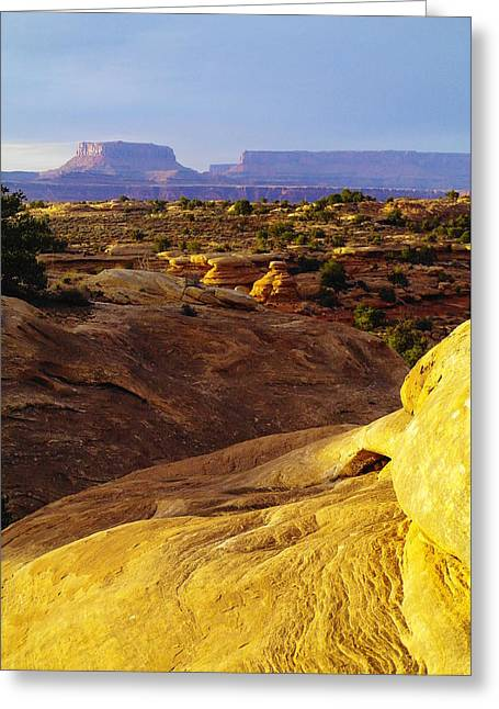Southern Utah Greeting Cards - Canyonlands Greeting Card by Jeff  Swan