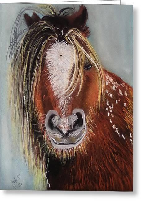 Pony Pastels Greeting Cards - Carneddau Pony Greeting Card by Julie Hollis