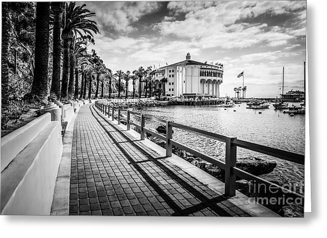 Historical Pictures Greeting Cards - Catalina Island Avalon Casino Black and White Photo Greeting Card by Paul Velgos