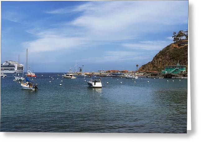 Ocean Vista Greeting Cards - Catalina Island Harbor Greeting Card by Mountain Dreams